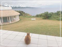 冬の沖縄旅☆北部で桜とステキなプチホテルステイ①~&Hana Stay~