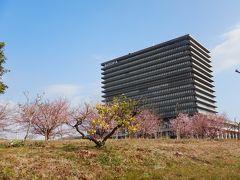 神奈川散歩 ~ビオトピア訪問と春探しの1日~