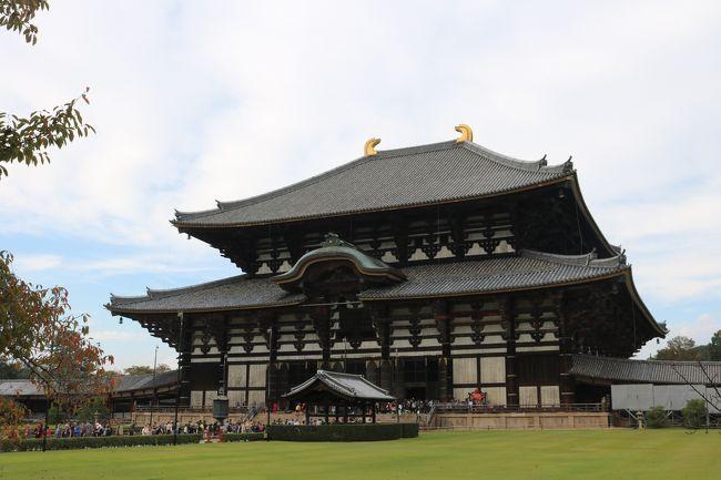 東大寺と元興寺へ行きました。