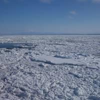 夫婦で行く流氷と札幌の旅