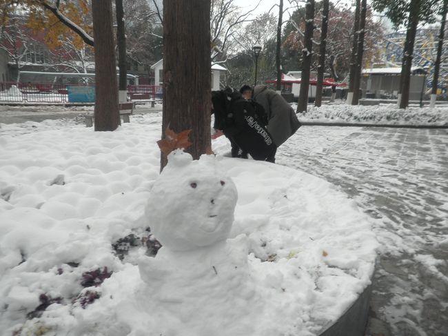 初、武漢、初日は大雪