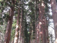 戸隠神社・忍者からくり屋敷と善光寺