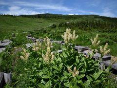 アートと自然に触れる福島旅行 後半 楽チン絶景トレッキング西吾妻山