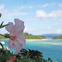 川平湾の美しさに感動、そして幸運のウミガメに出逢った♪【初めての沖縄離島(2)石垣島編】
