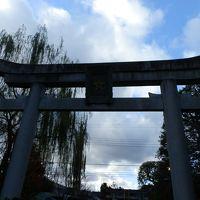 京都の初詣(晴明神社・下鴨神社)
