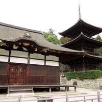 大津の寺社めぐり(三井寺と建部大社)