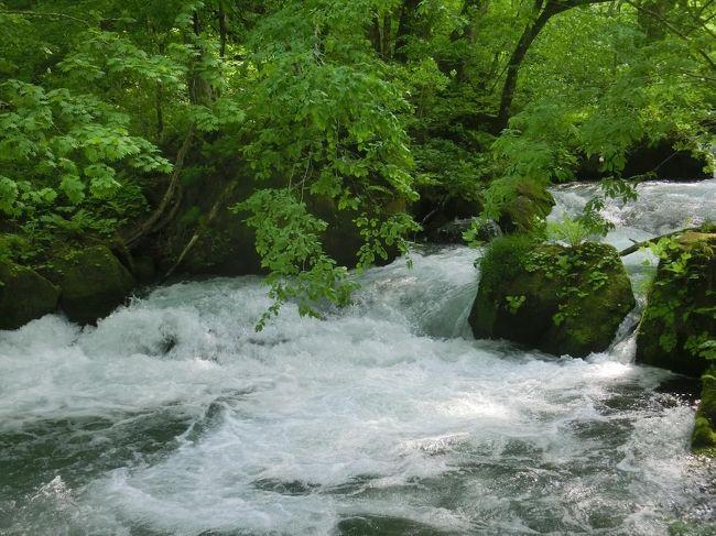 3日目は旅のメインともいうべき奥入瀬渓流の散策です。青森ー十和田湖間の路線バス『みずうみ号』、八戸ー十和田湖間の『おいらせ号』の時刻表を見て十和田湖にも1時間の滞在が可能だったので寄ってみました。歩いた後は温泉へ、星野リゾート 奥入瀬渓流ホテルに泊まってのんびり寛いできました♪<br /><br />■十和田湖国立公園協会<br />http://towadako.or.jp/<br /><br />■ゆるりら十和田(十和田市観光協会)<br />https://www.towada-kankou.jp/<br /><br />■JRバス東北<br />https://www.jrbustohoku.co.jp/