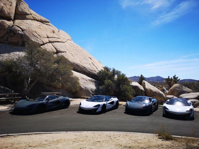 今回はパブリシティー目的でしたので、スケジュールは確定済みでした。<br />ハイパーカーとなるMcLaren 600LT の走りのパフォーマンスが楽しめるスケジュールです。<br />1.Joshua Tree National Park Hidden Valley tour.<br />パームスプリングスにある有名な国立公園です。<br />奇岩や名前にあるジョシュア ツリーが有名な場所ですが、やはりドライブでのツアーが最適です。<br />公園内は当然車で回れるのですが、道路はワンウェイでも走れるようになっており、また車窓からの景観でも十分楽しめます。<br />途中ランチをとりながら、いろいろなところで景色を楽しめました。<br />国立公園内に目立つレストランやドライブインが非常に少ないのでランチボックス持参がおすすめです。<br />また飲み物は十分持っていきましょう。<br />ちょうど夏季でしたので非常に暑かったです。<br /><br />2. 600LT launch film set exclusive access and tour.<br />特別コマーシャルを撮影するために 廃墟に向かいました。<br />車自体がアバンギャルドなので 非常に廃墟とはマッチします。<br />場所はシークレットにしてほしいとのことなので場所は伏せておきます。<br />最近クレージージャーニーでも廃墟の映像を目にすることが増えましたがやはり実際の場所に行ってみるとその威圧感は相当なものになります。<br /><br />3. San Andreas Fault tour.<br />断層がそのまま観光地化したところです。<br />こういった特殊な場所は結構現地のネイティブな人が地権者なのかガイド役の人もそんな感じの人でした。<br />アクティビティーとしてはそれほど高くはないですが個人的にはなかなか行けない場所でしたので味わい深いTourでした。<br />