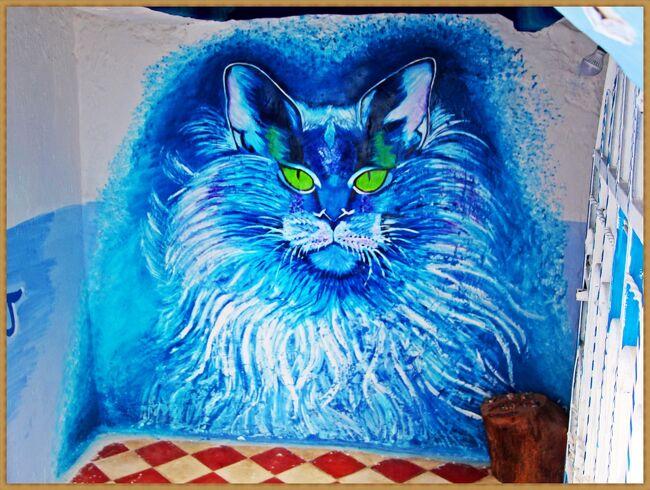 もふもふ =^_^= ネコ歩き/シャウエン王-Chat Bleu-の囁き【アダルト娘と旅するモロッコ-4(Chefchaouen)】
