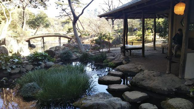 トピックスでもあがってた、天皇陛下御在位三十年慶祝の無料入園日<br />都内の19施設が無料でした。<br />上野動物園は激混みだったのではないかと予想されるこの日<br />駒込にある「六義園」に行って来ました。<br />ネットにはステキ写真がたくさんある中「何これ?」な園内の橋写真ブログ<br /><br />ーボランティアガイドー<br />土日祝の11時と14時の2回(約60分/無料)<br />時間が合わなかったので残念。<br />ガイドしてもらった方が断然楽しいと思う<br />