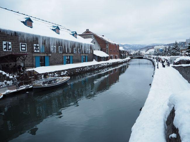 北海道には5年前から毎年のように訪れていますが、<br />いつも夏なので今回はふっこう割を使って冬の北海道へ行ってきました。<br /><br />&lt;エースJTB&gt;スカイマークで行く北海道3日間<br />ふっこう割15,000円/人を使い、17,700円/人という安さ。<br />ホテルは札幌駅直結の【ホテルグレイスリー札幌】。<br /><br />冬ならではの北海道を楽しむべく、<br />わかさぎ釣りツアーとスノーシューツアーにも参加してきました。<br /><br />冬の北海道は銀世界でした。