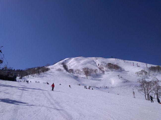 2019/2/24~25の一泊二日で苗場&かぐらみつまたにスキーに行ってきました。宿泊は久しぶりの苗場プリンスホテルです。信じられない位の好天に恵まれ、ピクニックランチも楽しめました。でも、雪質は完全に春スキーでした。