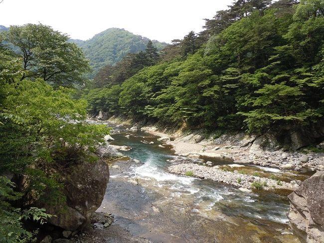 費用をかけずに飛行機の旅、高速バスの旅といろいろ試みて来ましたが、ここでJRローカル線にチャレンジしてみる事に。仙台⇔福島、福島⇔郡山のWきっぷを利用して栃木へ行ってみました。出発日は急がず福島に泊まって一息入れてから2日目栃木へ入る形で、最終日も郡山でプラネタリウムを見て帰る福島県も絡めた旅程にしました。おかげで疲れたり移動が遅くてイライラする事もなく楽しくゴトンゴトンしていました♪