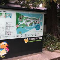 吉祥寺 商店街〜井之頭公園 ぶらり散歩