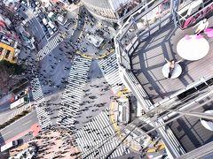 東京&横浜ぶらり旅with次男【新宿、原宿、渋谷編】