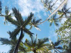 長女10歳 長男4歳 初の個人手配でハワイへ行ってみた 6日目