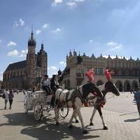 2018 ヨーロッパ周遊 <クラクフ編> Vol1.旧市街