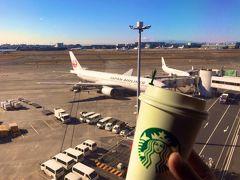 元旦に行く「休日おでかけパス」ツアー! その2 【東京の空の玄関口 羽田空港へ!】