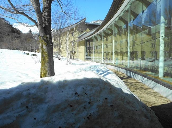 10年ほど前から利用させて頂いている「谷川温泉」のお気に入りの宿へ~~。<br />たくさんの雪の積もる風景を見たいと思い、行ってきました。<br />今年は、雪の量も少ないとのことで、高速道路も「まったく雪なし」~~。<br />宿へ向かう専用の道は、きちんと除雪がしてありましたので、スタッドレスタイヤでなくても大丈夫だったと思います。(我が家は念のため、スタッドレスで行きましたが・・・)<br /><br />宿から見える「谷川岳」は、いつもの年より雪が少ないとか~~。<br />宿のお庭には、1メートルほどの雪が!<br />お部屋の露天風呂から見る景色にも雪・雪~~♪<br />一度は見たいと思っていた「雪景色」に大満足~~♪