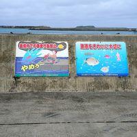近くて遠い?「戸なき」島で沖縄の原風景を体験 〜3日目