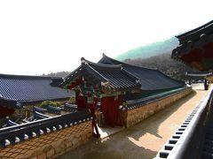 どんだけ好きやねん。またまた釜山に行って来ました。後編。おまけ付き(*^。^*)