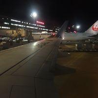 ボーイング737-800に乗りました。HND-NGO JAL209便です。