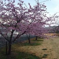 春間近の敷地(磐田市)一宮(森町)を、ドローン片手にふらりと遊ぶ