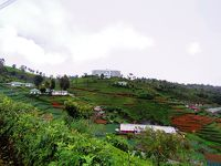 2019スリランカ旅行4~Heritance Tea Factoryでトレッキング