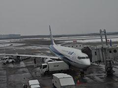 2019年3月北海道鉄道旅行1(NH1181便で新千歳空港へ)