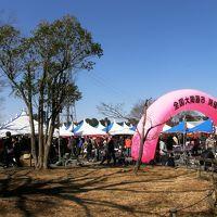 大宮第2公園で開催されている梅園と全国陶器市に訪れる