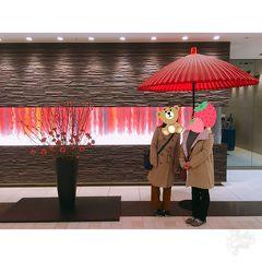 京都3月①~宇治お茶席体験と平等院、宇治上神社から北野天満宮梅苑ライトアップ見物