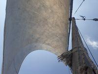 風に吹かれて スワヒリ・コースト ダウ船の旅 �チェシャレを目指し、明け方の出港