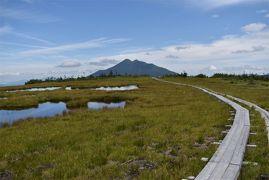 今年の尾瀬はアヤメ平!のんびり天空の湿原散歩