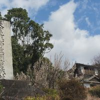 愛媛&高知の百名城の旅5日目(岡豊城)