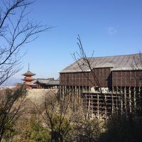 京都☆母娘旅行☆2日目☆清水寺〜高台寺まで6寺社巡り Part1