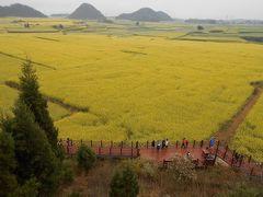 還暦過ぎ夫婦(その2) 雲南省の羅平は黄色い菜花(なばな)の上に冷たい霧雨が降っていた(2019年2月22日~3月3日)