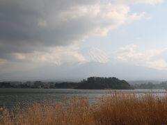 伊豆半島の花めぐりの旅5(富士山編)