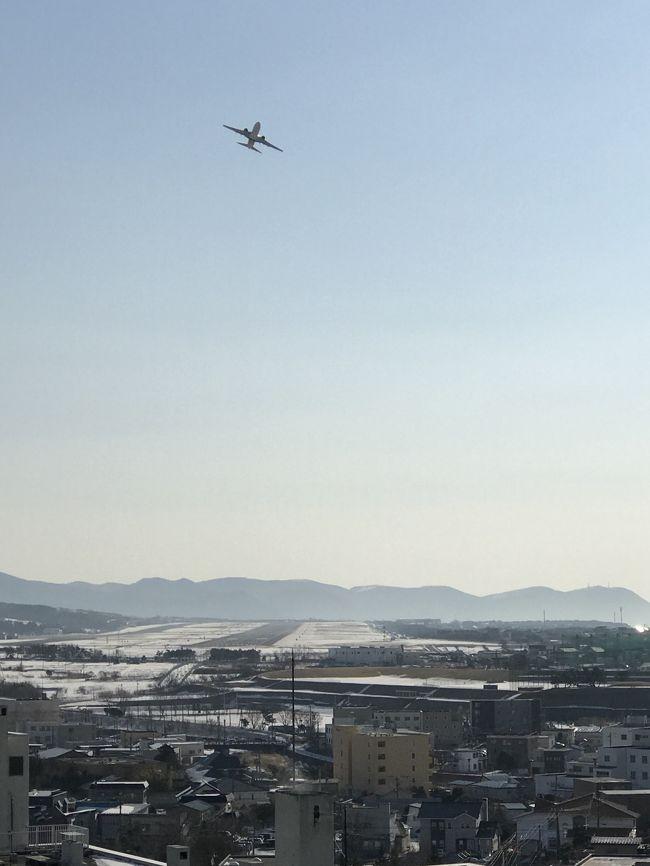 1月の登別&札幌に続く、ふっこう割りを使って行く冬の北海道旅行の第二弾です。今回は、函館に行ってきました。函館は、2015年10月(https://4travel.jp/travelogue/11279692)以来です。<br />初日のホテルは、湯の川温泉にある「望楼NOGUCHI函館」でした。<br />表紙の写真は、ホテルの部屋から見えた函館空港と離陸した飛行機です。