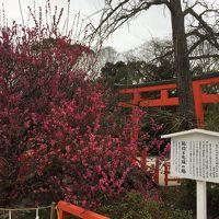 京都☆母娘旅行☆3日目☆Part1 下鴨神社・河合神社・錦天満宮