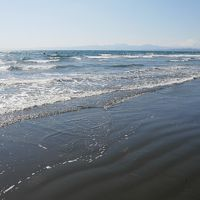 はよ来いっ鵠沼の夏!江ノ島春まつりなんか行っちゃったり編