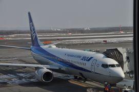 2019年3月北海道鉄道旅行8(ANA1182便で帰途)