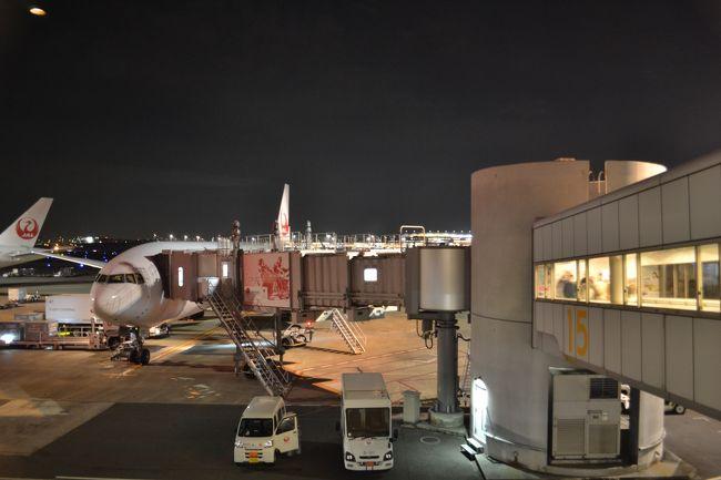 所要で福岡は博多へ。2日目はホテルでダラダラした後に太宰府へ行き、そのまま夜のヒコーキで東京へとんぼ返り。帰りの国内線は普通席です。往路との落差が…^^;;;<br /><br />*本記事の旅程<br />JL330:FUK20:00-HND21:30