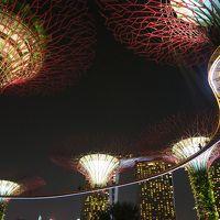 unique Singapore 48時間 #2 【2日目】夜の定番★スペクトラとガーデン・ラプソディ