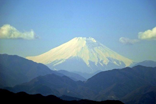 17回目の健康登山は、下山後に高尾梅郷の梅まつりを見る予定。<br />急いでリフトも使おうかと思ったが、健康登山なので、1号路をてくてく登る。<br />最近の登山は富士山が見えないことが多いが、今回は頂上から美しい富士山を見ることが出来た。<br />深い森の「いろはの森」をゆっくりと下った。<br /><br />過去の高尾山旅行記(いろいろなルートを通っているのでご参考に)<br /><br />⑰高尾山健康登山(16) 景信山ー小仏城山ー相模湖 紅葉は<br />https://4travel.jp/travelogue/11425178<br />⑯高尾山健康登山(15) 1号路-3号路-高尾山山頂ー薬王院ー2号路ーびわ滝道ー高尾山温泉 2018年5月<br />https://4travel.jp/travelogue/11360732<br />⑮高尾山健康登山(14) (リフト)-高尾山山頂ー6号路 2018年3月<br />https://4travel.jp/travelogue/11338345<br />⑭ 高尾山 紅葉は 1号路ー高尾山ー相模湖  健康登山(13) 2017年11月<br />https://4travel.jp/travelogue/11301023<br />●高尾梅郷 木下沢梅林、梅まつり  2017年3月<br />https://4travel.jp/travelogue/11223152 <br />⑬高尾山健康登山(12)(リフト)-高尾山山頂ーいろはの森ー高尾梅郷ー高尾山温泉 2017年3月<br />http://4travel.jp/travelogue/11223705<br />⑫高尾山のダイヤモンド富士は (ケーブルカー)ー高尾山山頂 健康登山(11)2016年12月<br />http://4travel.jp/travelogue/11200677<br />⑪高尾山 紅葉は 1号路ー高尾山ー相模湖 健康登山(10)2016年11月 <br />http://4travel.jp/travelogue/11193851<br />⑩高尾山健康登山(9) 6号路ー高尾山ー1号路-琵琶滝ー高尾山温泉 2016年10月<br />http://4travel.jp/travelogue/11181642<br />⑨高尾山健康登山(8) 1号路ー高尾山ー4号路-琵琶滝ー高尾山温泉 2016年4月<br />http://4travel.jp/travelogue/11123664<br />⑧高尾山健康登山(7)梅林 1号路ー高尾山ーいろはの森ー木下沢梅林ー高尾駅 2016年3月<br />http://4travel.jp/travelogue/11112695<br />⑦高尾山健康登山(6) 6号路(琵琶滝)ー高尾山ー金毘羅台歩道-高尾駅 2016年2月<br />http://4travel.jp/travelogue/11100834<br />⑥高尾山健康登山(5) 紅葉は 蛇瀧ー高尾山ー相模湖 2015年11月<br />http://4travel.jp/travelogue/11079204<br />⑤高尾山健康登山(4) 稲荷山コースー奥高尾ー高尾山ー琵琶滝 2015年9月末<br />http://4travel.jp/travelogue/11060097<br />④高尾山健康登山(3) 紅葉は 琵琶滝ー高尾山ー相模湖 2013年11月<br />http://4travel.jp/travelogue/10833361<br />③高尾山健康登山(2) 1号路ー高尾山ー小仏峠ー小原宿 2013年5月<br />http://4travel.jp/travelogue/10775822<br />②高尾山健康登山(1) 桜、富士山 1号路ー高尾山ー小仏峠ー旧甲州街道 2013年4月<br /> http://4travel.jp/travelogue/10765461<br />①高尾山から相模湖ハイキング 紅葉は? 1号路ー高尾山ー相模湖 2012年11月<br />http://4travel.jp/travelogue/10729717<br />