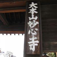 冬の京都旅〜2日目〜