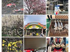 2019、3月 豊島園周辺を散策してみました。