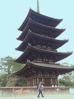 滋賀⇔奈良は近いと思っていたけど、結局300km超のドライブを楽しんだ2日間♪ -斑鳩・奈良市内編-