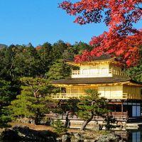 2013年 秋の京都 弾丸ツアー