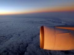 長男と行くハワイ3泊 成田国際空港~ダニエル・K・イノウエ国際空港 JALの翼の空の旅その1