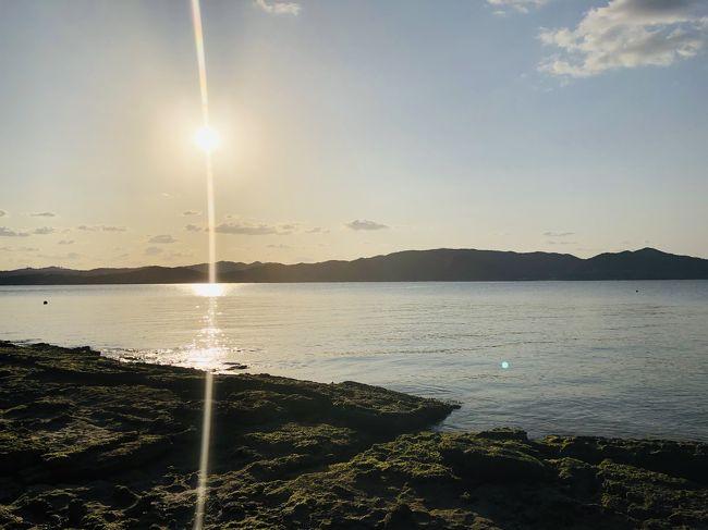 まだちょっと肌寒い今年の春。<br />あったかくて、温泉も入れるとこに行きたい(*´_`*)。<br /><br />なんで今回は鹿児島へ。<br />奄美大島<br /> ↓<br />指宿<br /> ↓<br />霧島<br />へ行ってみた。